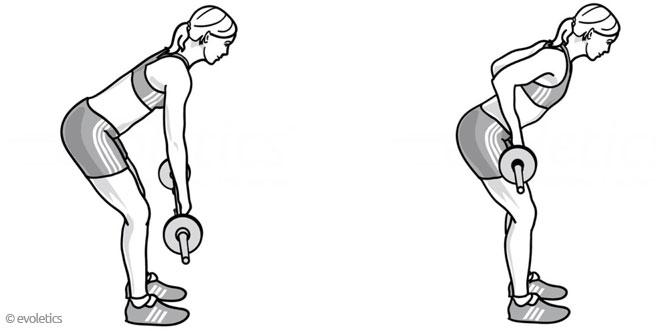 Vorgebeugtes Rudern mit Langhantel - Die korrekte Ausführung